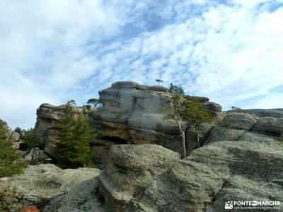 Picos Urbión-Laguna Negra Soria;ocejon juniperus thurifera puente poncebos viajazo las cinco villas